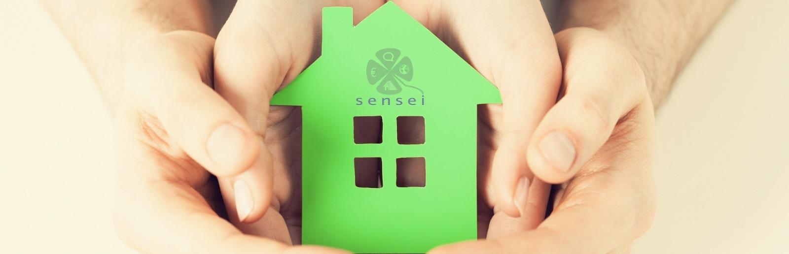 SENSEI project